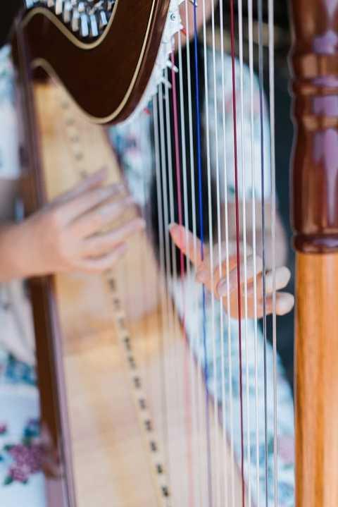 harpist at sequoia national park wedding