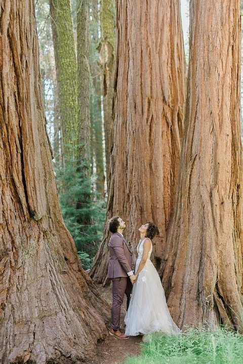 Elopement couple amongst the magical sequoia trees