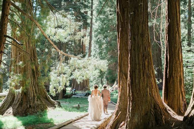 Big Trees Trail elopement wedding photos in Sequoia National Park