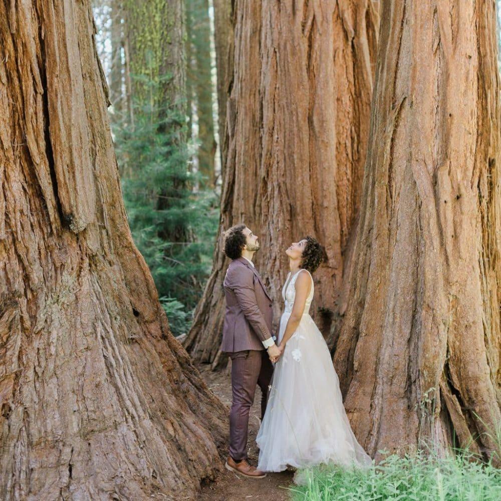 Sequoia Elopement Photo